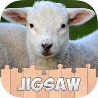 Animal Jigsaw Puzzle For kids and Adults