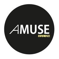 AMUSE Experience