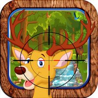 The Hunted Deer - Big Country Hunting