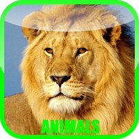 Animal Zoo Sound Baby Game - fun for all family, parent & babies can play & learn animals sounds in pet zoo story game (Free)