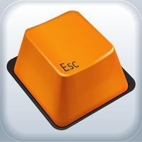 ESC Mobile 13: Field Service