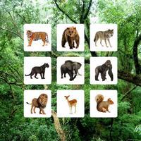 Jungle Sudoku - Puzzle Game