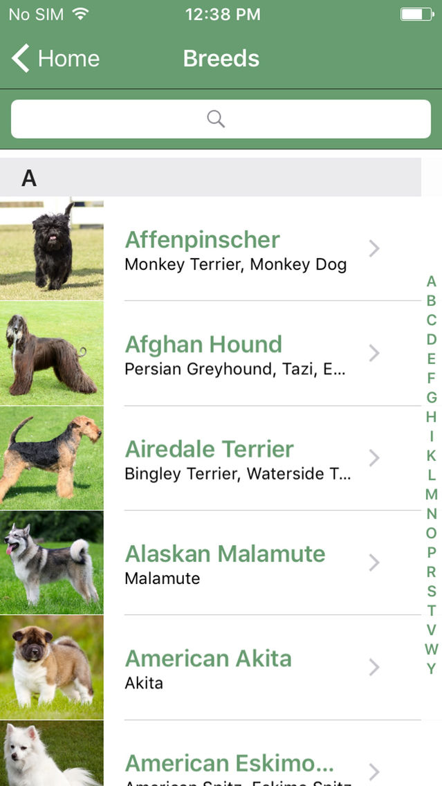 What Dog A Microsoft Garage Project App for iPhone - Free