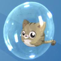 泡泡猫 - 全民开心休闲游戏