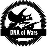 DNS of Wars