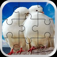Love Bird Jigsaw Puzzle paradise : Train The Brain
