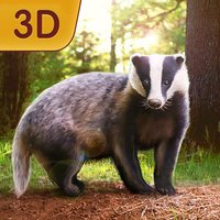 Badger Simulator 3D