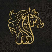 Al Shiraa Arabians