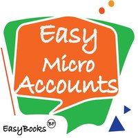 Easy Micro Accounting Manager