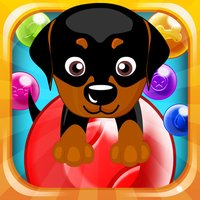 Doggy Bubbles - Play bubbleshooter in this action packed game!