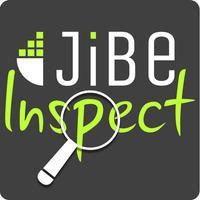JiBeInspect-LISCR