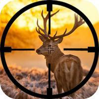 Master Hunter Wild 3D