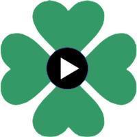Irish EVO