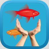 Tap Flap Fish - السمكة الطائرة