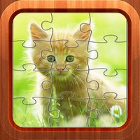 Cat Kitten Pet Baby Jigsaw Puzzles Games for Kids