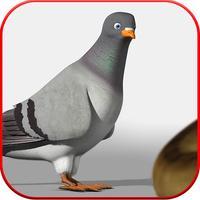 Spy Pigeon Mission