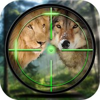 Forest Animal Hunting
