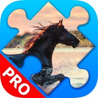 Horses jigsaw puzzles for adults. Premium