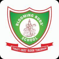 Blooming Buds Schools.