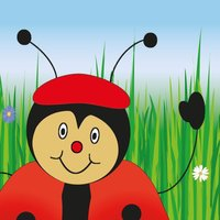 Beetle Q