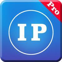 IP地址查询专业版-最好的网址信息查询App