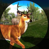 Deer Hunting in Wild Forest with Sniper