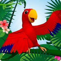Koukou Tropico