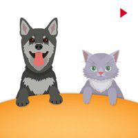 Animated Pet Cats & Dog