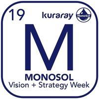 MonoSol Vision & Strategy Week
