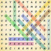 Word Search ++