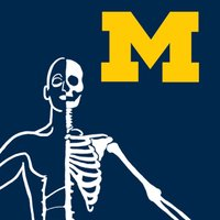 MSK Anatomy - SecondLook