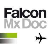 Falcon Maintenance Doc