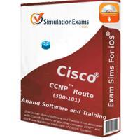 Exam Sim For CCNP® Route