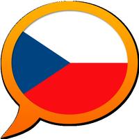 Česká vícejazyčný slovník