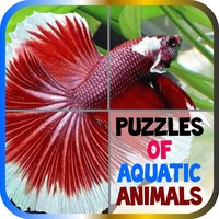 Puzzles of Aquatic Animals Free