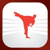Rebirth Of Martial Arts