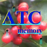 ATCmemory