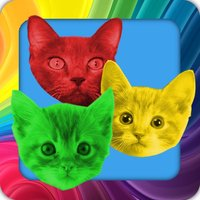 Cat Swap! Cats and Kittens Gem Puzzle