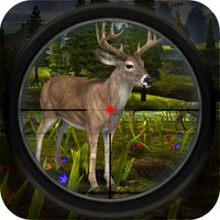 Wild Deer Shooting: Sniper Hunting Session