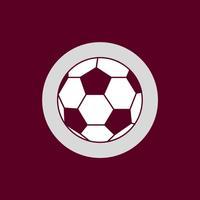 Los Morados - Futbol del Saprissa de Costa Rica