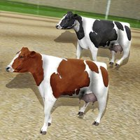 Cow Racing Free Game