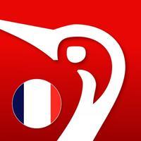 Gyldendal's French Danish Dictionary - Mini