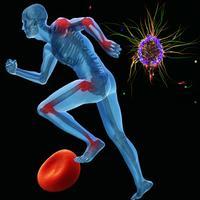 Encyclopedia of Human Diseases