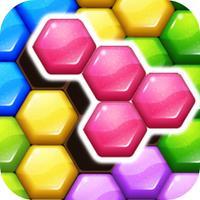 Hexa 7 Color Match