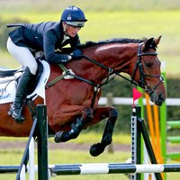 Champion Of Horse Jumping Show
