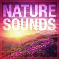 Nature Sounds-Relax and Sleep