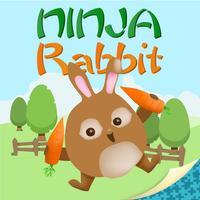 Ninja Rabbit - Awesome Skill Game
