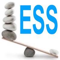 ESS Efficacy Safety Score. Postoperativ monit syst