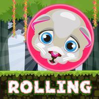 Rolling Rush - Endless Adventure