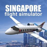 Singapore Flight Simulator